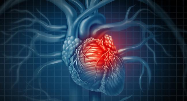galvos širdis rankų sveikatos iliustracijos)